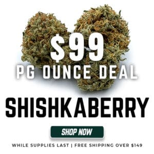 Buy Shishkaberry